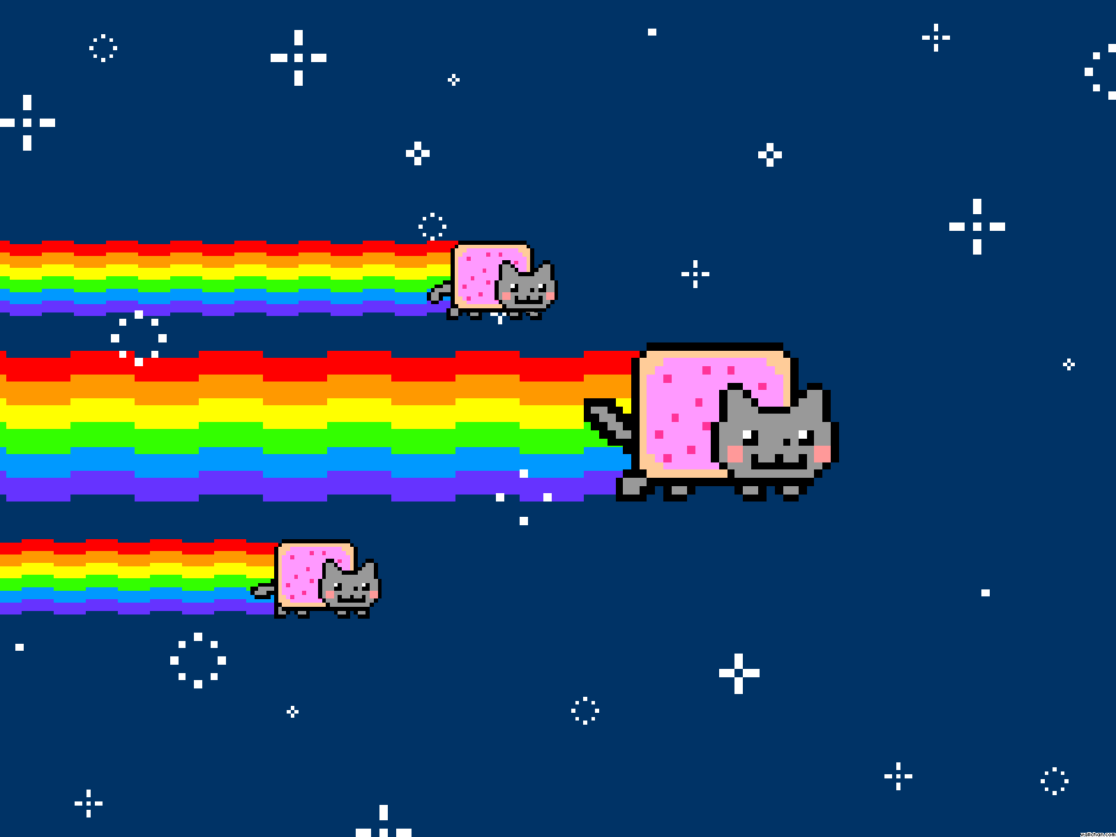 Coolest Nyan Cat Picture Ever